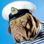 Рисунок профиля (Just_a_seaman)